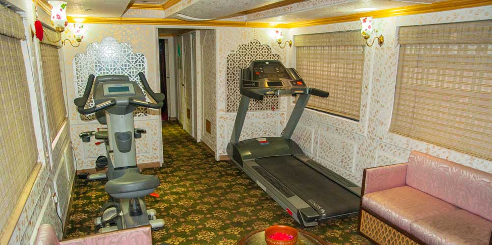 Gym Area of Palace on Wheels Train